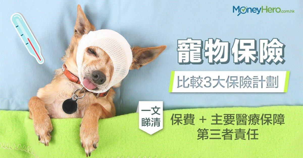 【-寵物保險-】比較3大保險計劃-一文睇清保費、主要醫療保障及第三者責任-min